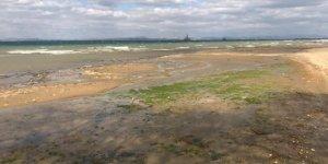 Yalova'da deniz suyu çekildi, panik yaşandı!