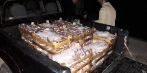 Kaçak avlanan balıkçılar suçüstü yakalandı