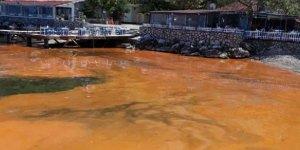 Mudanya'da deniz yüzeyinin rengi değişti