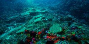 En eski gemi batığı Unesco'da tanıtıldı