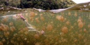 Bu gölde yüzmek cesaret ister