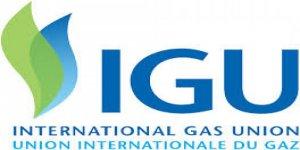 IGU Araştırma Konferansı 2020'de Umman'da