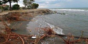 Karadeniz'in hırçın dalgaları kumsalı yuttu