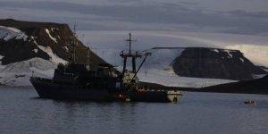 Deniz aygırının saldırdığı tekne battı