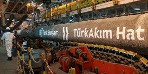 Türk Akım'dan sorumlu şirketin hisseleri donduruldu