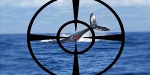 Norveç balina avında Japonya'yı yakaladı