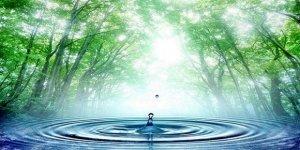 İçme suyu kaynaklarının doluluk oranı yüzde kaç ?