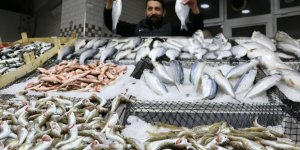 Balıkçılar umduğunu bulamadı