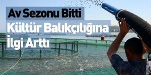 Av Sezonu Bitti, Kültür Balıkçılığına İlgi Arttı