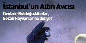 İstanbul'un Altın Avcısı