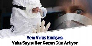 Yeni Virüs Endişesi Vaka Sayısı Her Geçen Gün Artıyor