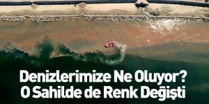 Mudanya Sahilinde Denizin Rengi Değişti