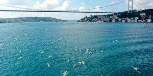 32. Boğaziçi Kıtalararası Yüzme Yarışı'nın Kazananı Belli Oldu
