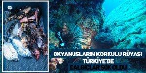 Okyanusların Korkulu Rüyası Türkiye'de