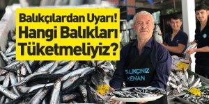 Balıkçılardan Uyarı! Hangi Balıkları Tüketmeliyiz?