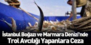 İstanbul Boğazı ve Marmara Denizi'nde Trol Avcılığı Yapanlara Ceza