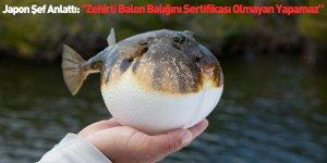 """Japon Şef Anlattı: """"Zehirli Balon Balığını Sertifikası Olmayan Yapamaz"""""""