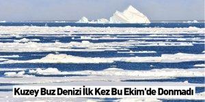 Kuzey Buz Denizi İlk Kez Bu Ekim'de Donmadı
