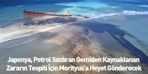 Japonya, Petrol Sızdıran Gemiden Kaynaklanan Zararın Tespiti İçin Morityus'a Heyet Gönderecek