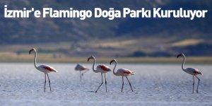 İzmir'e Flamingo Doğa Parkı Kuruluyor