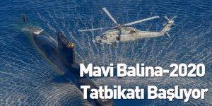 Mavi Balina-2020 Tatbikatı Başlıyor