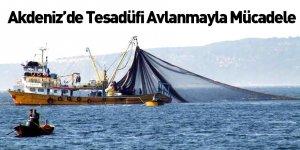 Akdeniz'de Tesadüfi Avlanmayla Mücadele