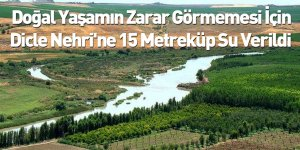 Doğal Yaşamın Zarar Görmemesi İçin Dicle Nehri'ne 15 Metreküp Su Verildi