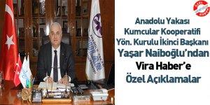 Anadolu Port Hizmete Hazır