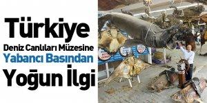 Türkiye Deniz Canlıları Müzesine Yabancı Basından Yoğun İlgi