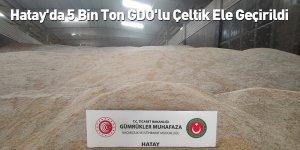 Hatay'da 5 Bin Ton GDO'lu Çeltik Ele Geçirildi