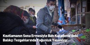 Kısıtlamanın Sona Ermesiyle Batı Karadeniz'deki Balıkçı Tezgahlarında Yoğunluk Yaşanıyor