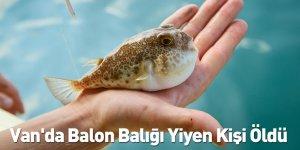 Van'da Balon Balığı Yiyen Kişi Öldü