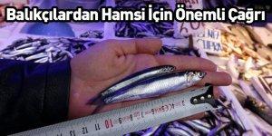 Balıkçılardan Hamsi İçin Önemli Çağrı