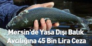 Mersin'de Yasa Dışı Balık Avcılığına 45 Bin Lira Ceza