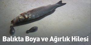 Balıkta Boya ve Ağırlık Hilesi