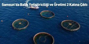 Samsun'da Balık Yetiştiriciliği ve Üretimi 2 Katına Çıktı