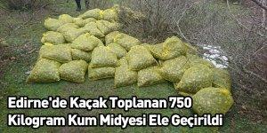 Edirne'de Kaçak Toplanan 750 Kilogram Kum Midyesi Ele Geçirildi