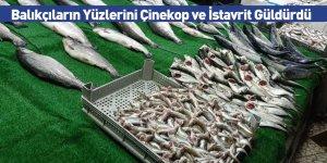 Balıkçıların Yüzlerini Çinekop ve İstavrit Güldürdü