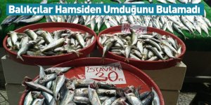 Balıkçılar Hamsiden Umduğunu Bulamadı