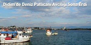 Didim'de Deniz Patlıcanı Avcılığı Sona Erdi