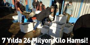 7 Yılda 26 Milyon Kilo Hamsi!