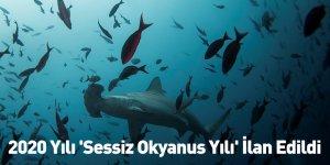 2020 Yılı 'Sessiz Okyanus Yılı' İlan Edildi