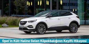 Opel'in Kült Haline Gelen Köpekbalığının Keyifli Hikayesi