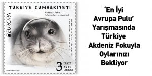 'En İyi Avrupa Pulu' Yarışmasında Türkiye Akdeniz Fokuyla Oylarınızı Bekliyor