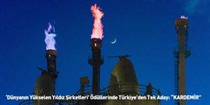 """'Dünyanın Yükselen Yıldız Şirketleri' Ödüllerinde Türkiye'den Tek Aday: """"KARDEMİR"""""""
