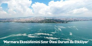 'Marmara Ekosistemini Sınır Ötesi Durum da Etkiliyor'