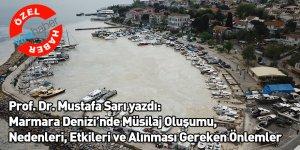 Prof. Dr. Mustafa Sarı: Marmara Denizi'nde Müsilaj Oluşumu, Nedenleri, Etkileri ve Alınması Gereken Önlemler