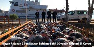 Kaçak Avlanan 3 Ton Kalkan Balığına Sahil Güvenlik Ekipleri El Koydu