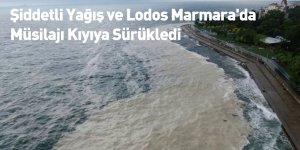 Şiddetli Yağış ve Lodos Marmara'da Müsilajı Kıyıya Sürükledi