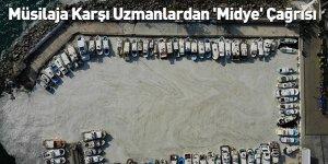 Müsilaja Karşı Uzmanlardan 'Midye' Çağrısı
